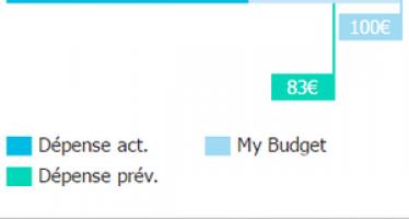Contrôler ses dépenses avec My Budget de l'Appli Home Thermostat