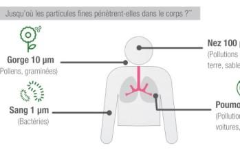 Pourquoi purifier l'air intérieur ?