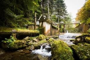 ilek propose une électricité locale et verte