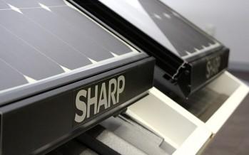 Module photovoltaïque 256 Wp à 48 cellules