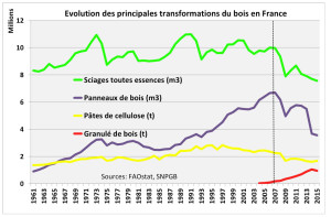 Evolution des principales transformations du bois
